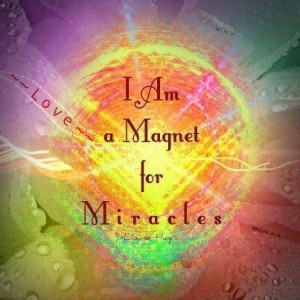 Magnet Miracle